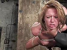 wellin bondage videos Holly