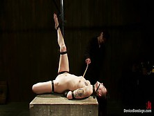Heavenly Hona Li In Real Bdsm Action