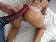 Конский Член Порно