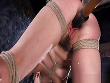 Bdsm Restrained As Maledom Pulls Pussy Hair And Hooks Ass
