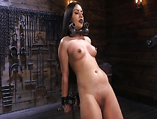 Bdsm Video Of Likable Latina Rose Darling With Pierced Nipples