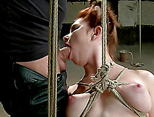 Melody Jordan Sucks A Dick And Gets Toyed In Bondage Vid