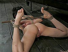 Tattooed Slave With Nice Ass Ravished Missionary In Bdsm